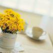 鲜花装饰0023,鲜花装饰,鲜花,花盆 桌子 茶杯