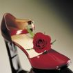 鲜花装饰0024,鲜花装饰,鲜花,红花 吉他 装饰