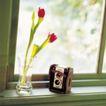 鲜花装饰0029,鲜花装饰,鲜花,窗户 养花 玻璃杯