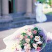 鲜花装饰0036,鲜花装饰,鲜花,花束 鲜花 植物