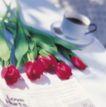鲜花装饰0037,鲜花装饰,鲜花,花朵 玫瑰 咖啡