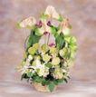 鲜花装饰0056,鲜花装饰,鲜花,