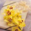 鲜花装饰0057,鲜花装饰,鲜花,