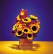 鲜花装饰0060,鲜花装饰,鲜花,