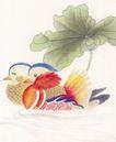 吉祥鸟0025,吉祥鸟,古玩吉祥,鸳鸯 水鸟 莲叶