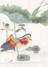 吉祥鸟0026,吉祥鸟,古玩吉祥,鸟儿 风景 吉祥鸟