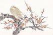 吉祥鸟0031,吉祥鸟,古玩吉祥,梅花 红梅 树木