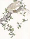 吉祥鸟0034,吉祥鸟,古玩吉祥,树杆 绿叶 植物