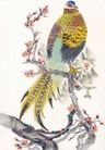 吉祥鸟0043,吉祥鸟,古玩吉祥,树枝 长尾鸟