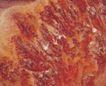 石纹0098,石纹,纹饰雕塑,红砂岩 岩浆岩 凝固