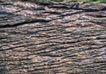 翠石纹0048,翠石纹,纹饰雕塑,