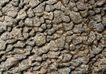 翠石纹0049,翠石纹,纹饰雕塑,