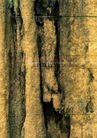 翠石纹0077,翠石纹,纹饰雕塑,