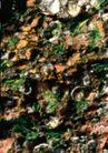 翠石纹0078,翠石纹,纹饰雕塑,