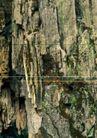 翠石纹0079,翠石纹,纹饰雕塑,