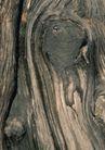 树纹0076, 树纹,纹饰雕塑,实木 砍断 节口