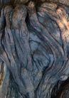 树纹0093, 树纹,纹饰雕塑,树纹 盘错 根系