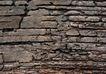 古今墙纹0046,古今墙纹,纹饰雕塑,