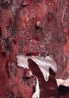 古今墙纹0083,古今墙纹,纹饰雕塑,