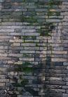 古今墙纹0094,古今墙纹,纹饰雕塑,砖墙 青苔 院墙
