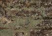 铜艺青铜0058,铜艺青铜,纹饰雕塑,