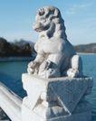 狮艺0048,狮艺,纹饰雕塑,