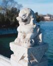 狮艺0050,狮艺,纹饰雕塑,