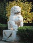 狮艺0071,狮艺,纹饰雕塑,石狮 黄叶 深秋