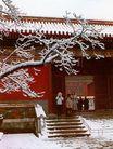 坤宁门雪景,雄伟紫禁城,首都风光,冬季 玉枝 大院