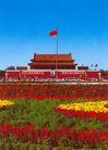 天安门,雄伟紫禁城,首都风光,花卉 红旗 飘扬