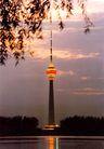 中央电视塔,辉煌北京,首都风光,广播 铁塔 柳条