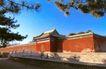 斋宫南门,历史古迹,首都风光,枝叶 松树 墙院