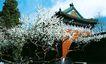 时辰亭-01,历史古迹,首都风光,名城