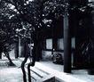 北京胡同0073,北京胡同,首都风光,石阶 门口 小树