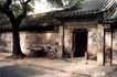 北京胡同0105,北京胡同,首都风光,自行车 门外 古树