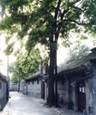 北京胡同0106,北京胡同,首都风光,