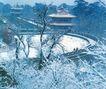 冰浴风景区,辽宁省,全国各省美景,树枝 结冰 雪白