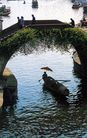 绍兴柯桥,浙江省,全国各省美景,土桥 肥草 丛生