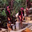 黎家姑娘,海南省,全国各省美景,压水井 吸水 农村