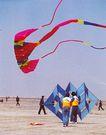 潍坊风筝会,山东省,全国各省美景,平地 广场 放风筝