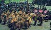 土家族欢庆丰收,湖南省,全国各省美景,湘西 少数民族 毛古斯舞