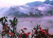 侗乡晨雾,广西壮族自治区,全国各省美景,红花 山雾 乡土