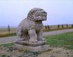 清东陵清西陵0061,清东陵清西陵,古代名胜,石狮 荒野 郊外