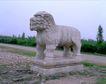 清东陵清西陵0062,清东陵清西陵,古代名胜,狮子 石头 陵园