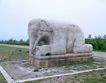 清东陵清西陵0064,清东陵清西陵,古代名胜,大象 石刻 清西陵