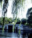 西堤六桥4,颐和园美景,古代名胜,绿化 愉悦 美景