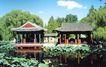 饮绿水榭,颐和园美景,古代名胜,