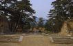 文物景点0091,文物景点,古代名胜,台阶 树木 砖头