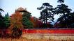 庆陵,宝陵碑亭,古代名胜,院墙 消暑 草地