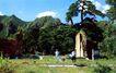 康陵,宝陵碑亭,古代名胜,植物 青山 游客